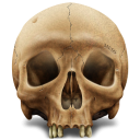 Skull icon png